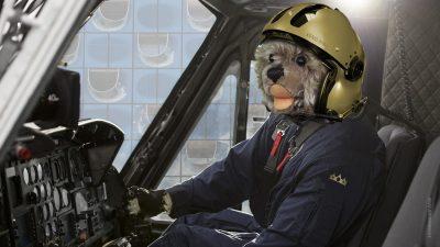 Teddybär König Opa I. im Helikopter checkt die Sicherheitslage für den G20-Gipfel