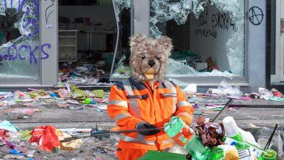 Teddybär König Opa I. bei der G20-Gipfel-Aufräumaktion
