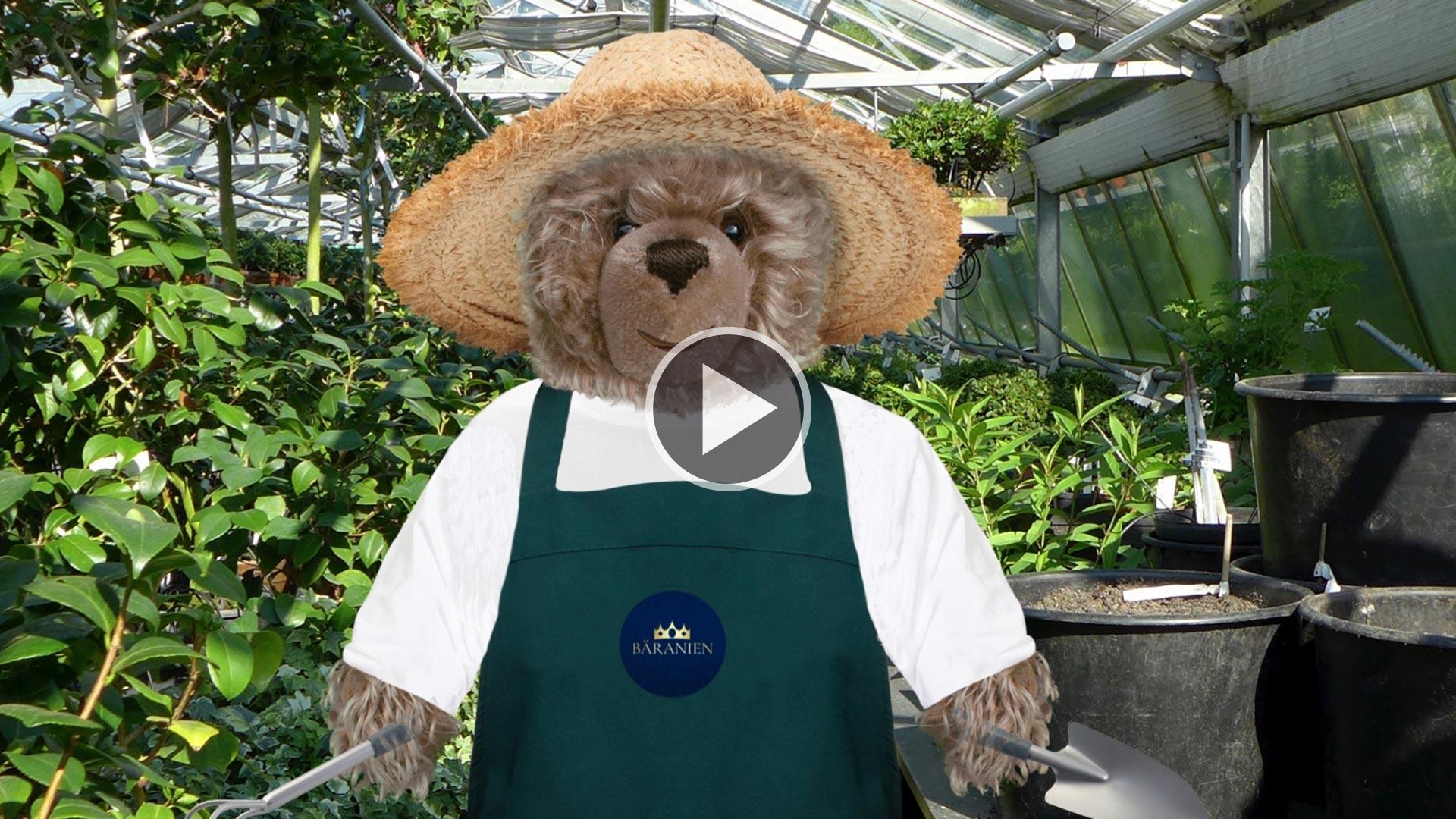 Teddybär -König Opa beim Gärtnern