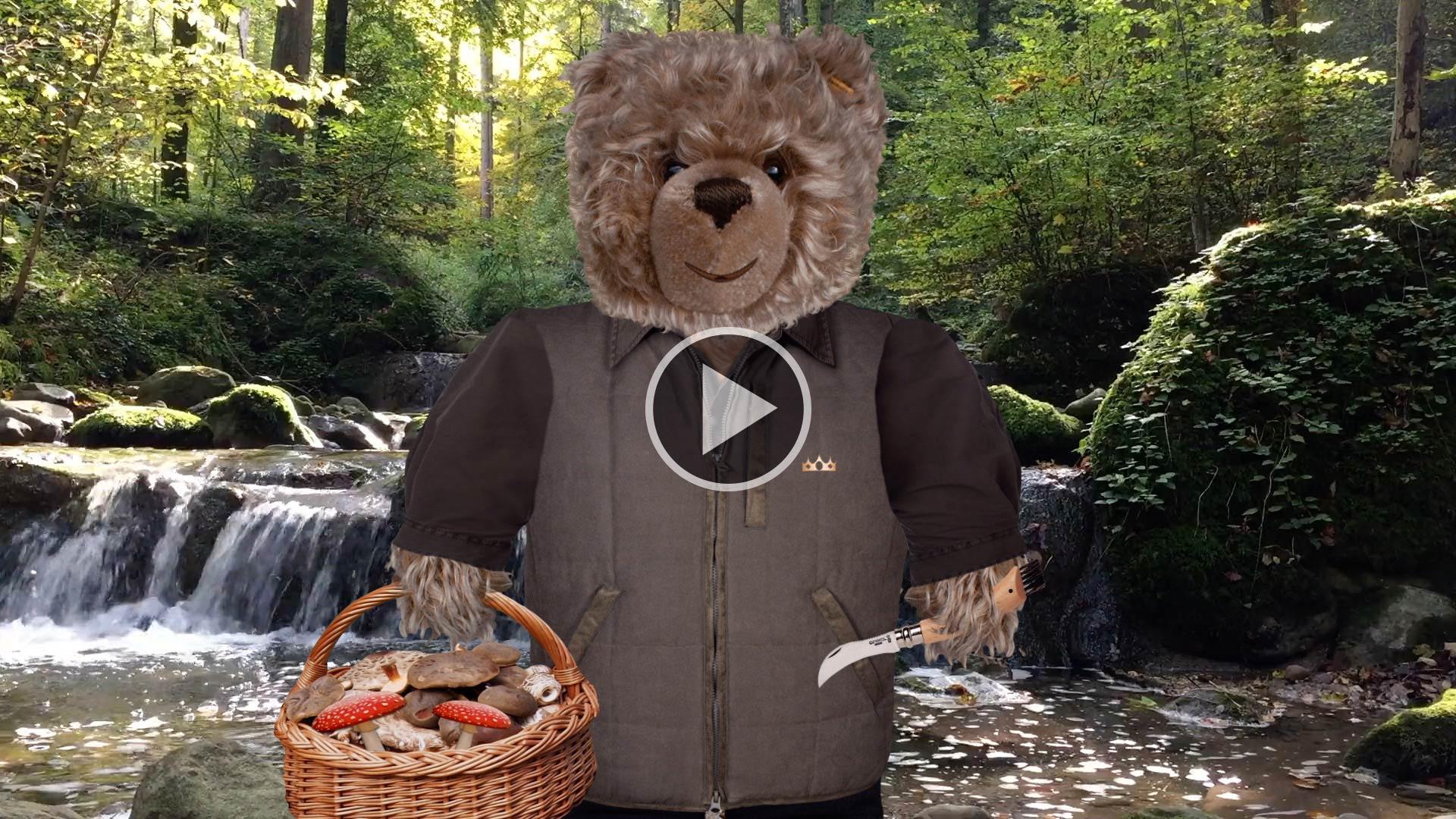 Teddy-König Opa und der Herbstanfang